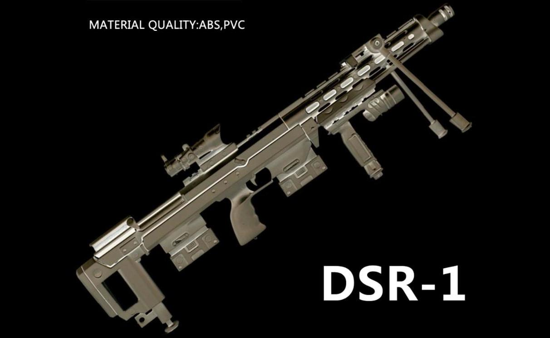 L DSR1