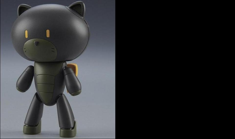 HG PETIT'GGUY STRAY BLACK & CAT COSTUME