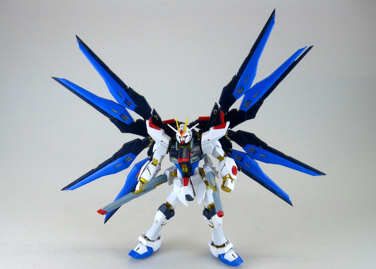 RG STRIKE FREEDOM